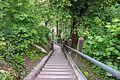 Kokra Canyon - stairs.jpg