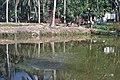 Kolam pemancingan - panoramio.jpg