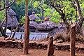 Konso village of Mecheke (29) (28536093913).jpg