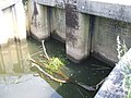 Kraftwerk Meppen 2010-6.JPG