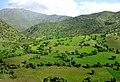 Kurdistan 20090511 10.jpg