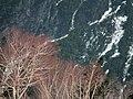 Kurobe-daira 黑部平 - panoramio (1).jpg
