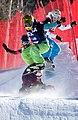 LG Snowboard FIS World Cup (5435928032).jpg