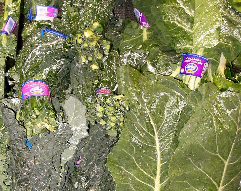 Lacinato Kale and Collard Greens