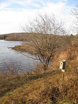 Lackawanna State Park - A bluebird box