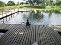 Lago del parque recreacional - panoramio.jpg