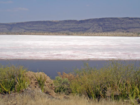 Image illustrative de l'article Lac Magadi