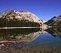 Lake Tenaya in Yosemite NP .jpg