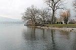 Lake Zurich - panoramio (60).jpg