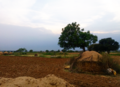 LandscapePakistan.png