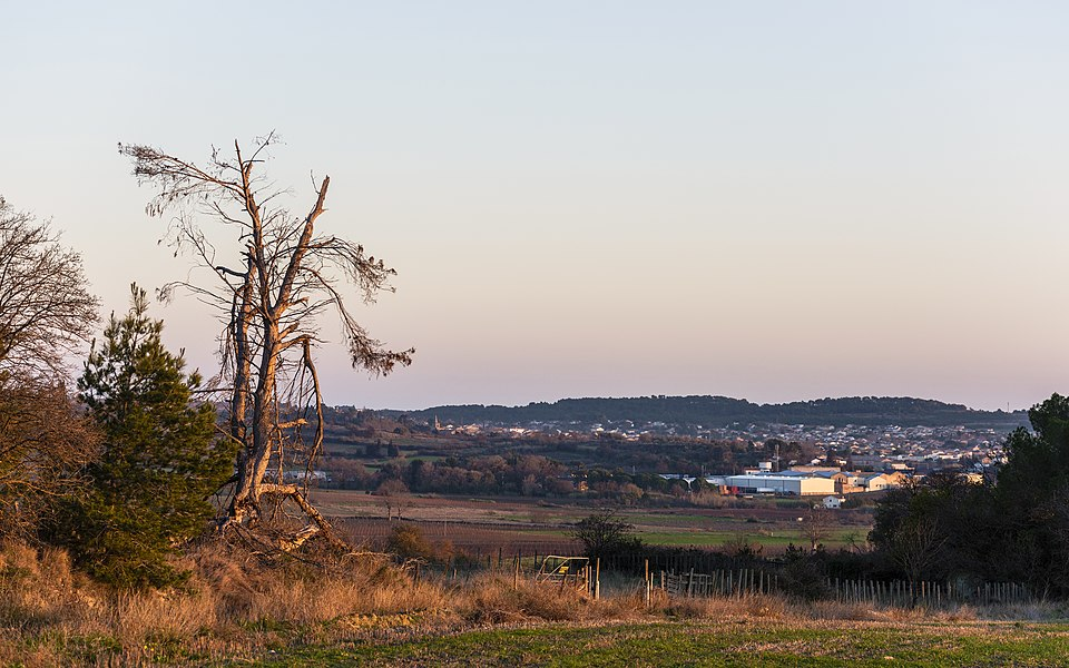 Landscape in the commune of Poilhes, the village of Nissan-lez-Enserune can be seen in the background. Hérault, France