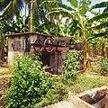Legendary water pump.jpg