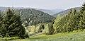 Liebesbankweg - panoramio (2).jpg