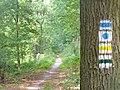 Lienewitz - Wanderweg - geo.hlipp.de - 39308.jpg