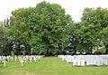Lijssenthoek Military Cemetery R08.jpg