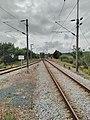 Linha do Oeste and Ramal de Alfarelos merging into Lares rail bridge.jpg