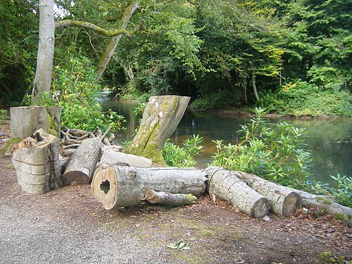Logs by the lake. Llanerchaeron - geograph.org.uk - 1806434