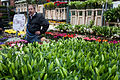 London - Columbia Flower Market - 2160.jpg
