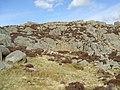 Long Crag on Ulpha Fell - geograph.org.uk - 730859.jpg