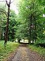 Lubostroń, park, ok. 1800h.JPG