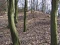 Luftenberg - Ringwall.jpg