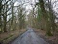 Lyefield Lane - geograph.org.uk - 1167269.jpg