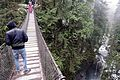 Lynn Canyon Suspension Bridge 2016.jpg