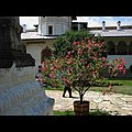 Mânăstirea Hurezi (16).jpg