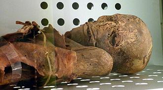 Tenerife - Guanche mummy in Museo de la Naturaleza y el Hombre of Santa Cruz de Tenerife