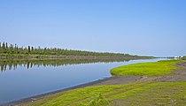 Mackenzie River east channel at Tuktoyaktuk Winter Road junction.jpg