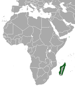 Madagascan Pygmy Shrew area.png