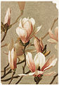 Magnolia (Boston Public Library).jpg