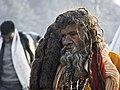 Maha Kumbh 2013.jpg