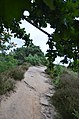 Malden - 2015 - panoramio (48).jpg