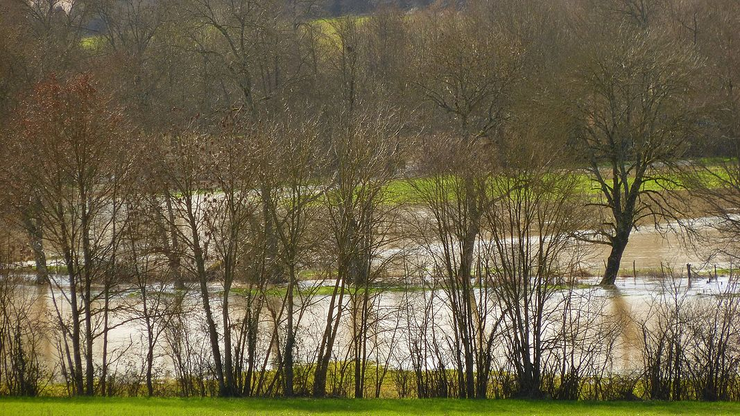 Confluence of the Agréau river with the fr:Branlin river, south of Malicorne (Yonne, Burgundy, France).  On the D 18 road to Champignelles, looking west, Feb. 2014; the fr:Branlin and its tributary the Agréau  flood the whole bottom of the valley.