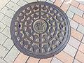 Manhole cover in Tokyo police.jpg