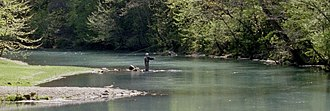 Spring (hydrology) - Trout fishing on Maramec Spring in Missouri