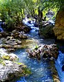 Margoon.River.jpg