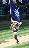 A large moose mascot runs down the third-base line of a baseball diamond. He is carrying a large navy blue flag adorned with a teal and silver compass.