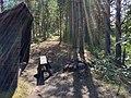 Mellanljusnan nature reserve - vindskydd.jpg