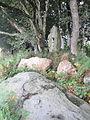 Menhir-Guernangoue2.jpg