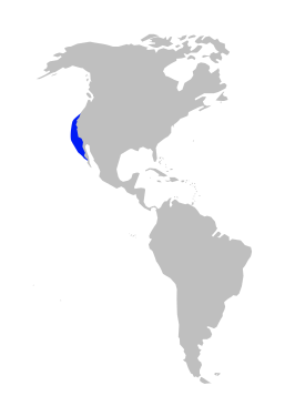 Mesoplodon perrini range map.svg