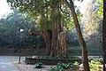 Mexico park.jpg