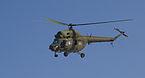 Mi-2 Darłowo 2009 .JPG