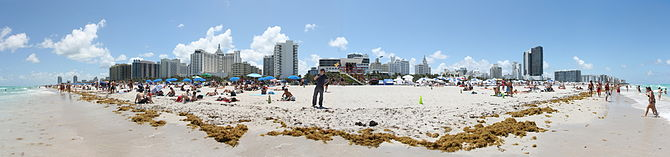 English: View from Lummus Park of Miami Beach,...