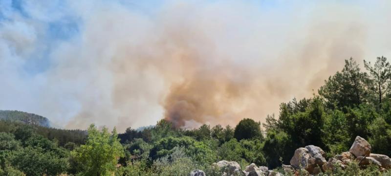File:Milas yangın 4.webp