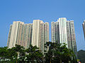 Ming Tak Estate 2012.JPG