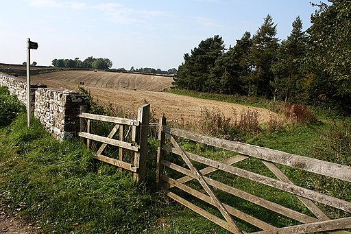 Miserden Field Gates and Public Footpath - geograph.org.uk - 1712132
