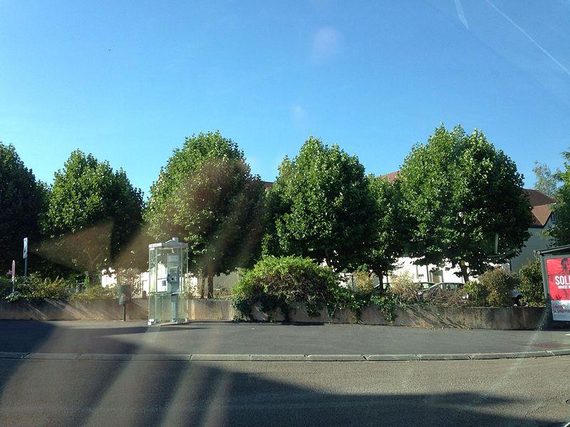 Parc de saint Georges sur baulche