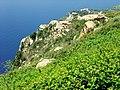 Monte Sant'Elia11.jpg